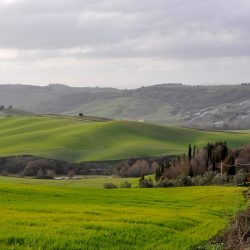 Property near Pienza for Sale image 7