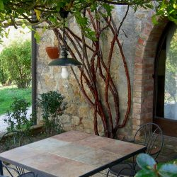Property near Pienza for Sale image 17