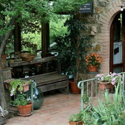 Property near Pienza for Sale image 19