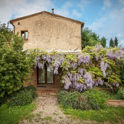 Property near Pienza for Sale image 18