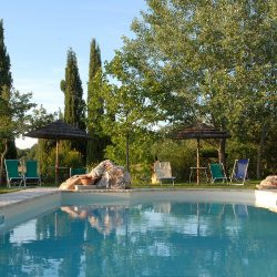Property near Pienza for Sale image 31