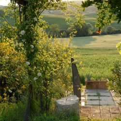 Property near Pienza for Sale image 29