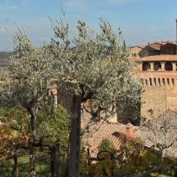 Restored Medieval Castle for sale image 9
