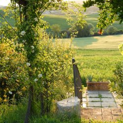 Property near Pienza for Sale image 79