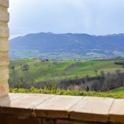 Castle in Le Marche for Sale image10
