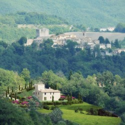 Castle in Le Marche for Sale image16