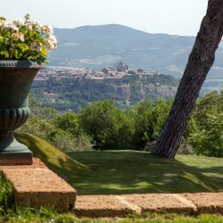 Orvieto Villa Image 27