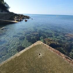 Tuscan Villa with Private Sea Access image 10