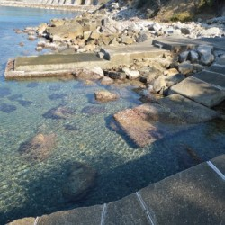 Tuscan Villa with Private Sea Access image 15