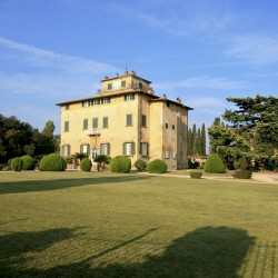 Estate with 45 Hectares for Sale image 47