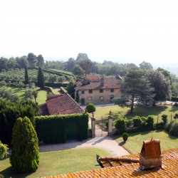 Estate with 45 Hectares for Sale image 8