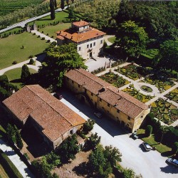 Estate with 45 Hectares for Sale image 42