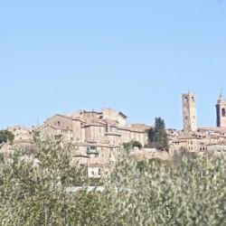 Copy of thumbs_madonna-delle-grazie39-1_670