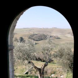 Val D'Orcia Estate with Organic Farm and Apartments (22)