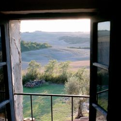 Val D'Orcia Estate with Organic Farm and Apartments (27)