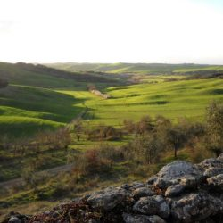 Val D'Orcia Estate with Organic Farm and Apartments (32)