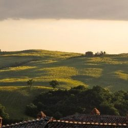Val D'Orcia Estate with Organic Farm and Apartments (35)