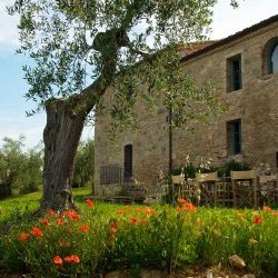 Val D'Orcia Estate with Organic Farm and Apartments (39)