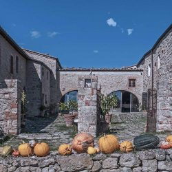 Val D'Orcia Estate with Organic Farm and Apartments (60)