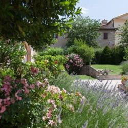 Trevi Property Image 44