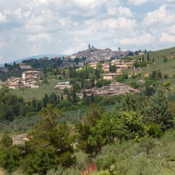 Trevi Property Image 36