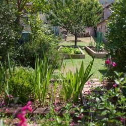 Trevi Property Image 32