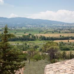 Trevi Property Image 31