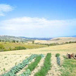 Val D'Orcia Farm Image 1