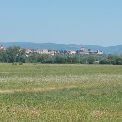 Investment Property on Lake Trasimeno for Sale image 13