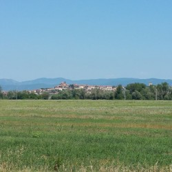Investment Property on Lake Trasimeno for Sale image 15