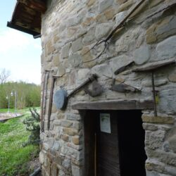 V4719SC Mill wih Apartments, Pool and Truffles, Le Marche (16)