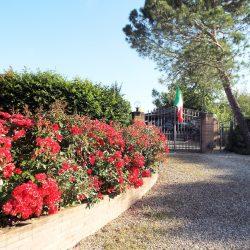 Tuscany property for sale Siena Farmhouse 44