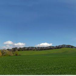 Tuscany property for sale Siena Farmhouse 46