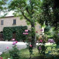 Tuscany property for sale Siena Farmhouse 33