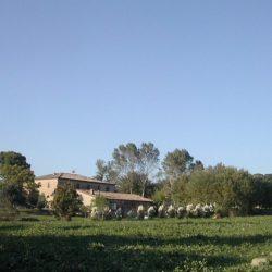 Tuscany property for sale Siena Farmhouse 42