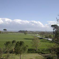 Tuscany property for sale Siena Farmhouse 43