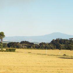 Tuscany property for sale Siena Farmhouse 48