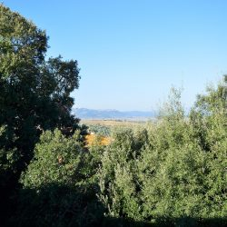 Val d'Orcia Village Property for Sale image 13