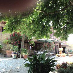 v2579ts House near Cortona for sale (21)
