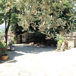 v2579ts House near Cortona for sale (9)