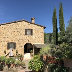 Restored Val D'Orcia Farmhouse with Pool and Olives Image 1