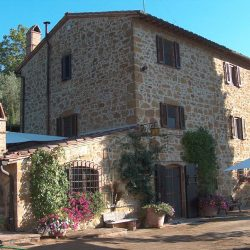 Restored Val D'Orcia Farmhouse with Pool and Olives Image 29