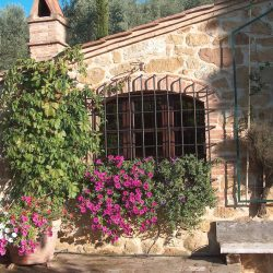 Restored Val D'Orcia Farmhouse with Pool and Olives Image 26