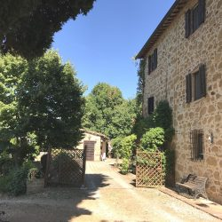 Restored Val D'Orcia Farmhouse with Pool and Olives Image 20
