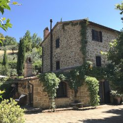 Restored Val D'Orcia Farmhouse with Pool and Olives Image 19