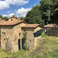 Val d'Orcia Farmhouse Image 15