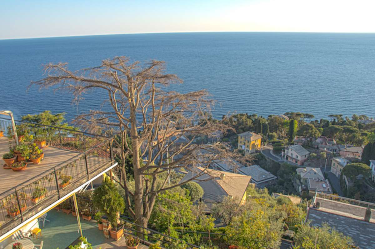 Coast Electric Phone Number >> Ligurian Coast Apartment with 2 Large Terraces - Casa Tuscany