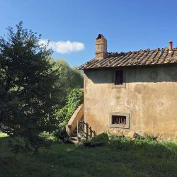 Val d'Orcia Farmhouse Image18