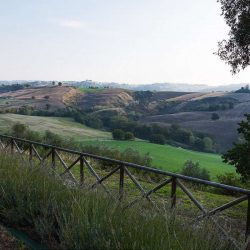 Historic Le Marche Estate Image 6