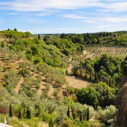 Borgo Property Image 13